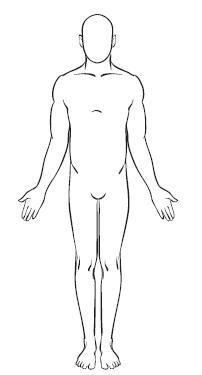Анатомичната позиция