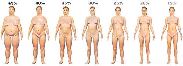 Телесни мазнини при жените