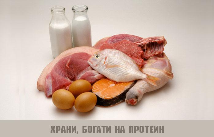 храни, богати на протеин