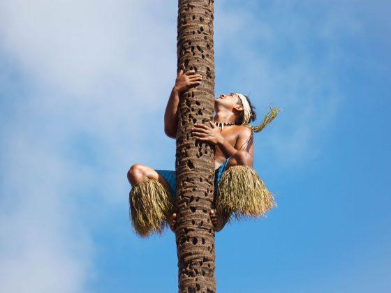 Вредно ли е кокосовото масло?